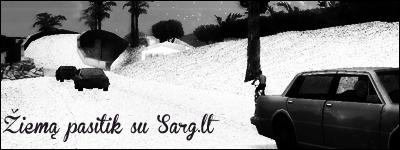 sarg1.png